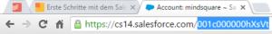 Salesforce Objekt-Id in URL