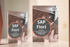 facebook-einzelbild_SAP_Fiori_2017-04-20