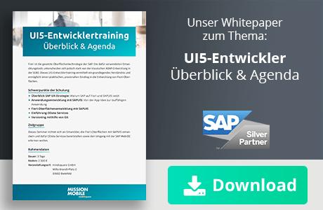 Whitepaper zum Thema UI5-Entwicklertraining