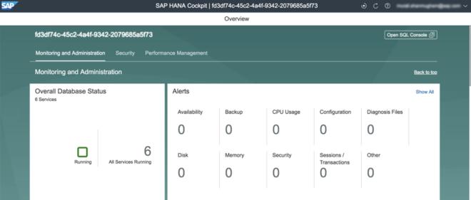Über Overall Database Status können Sie zu weiteren Details navigieren