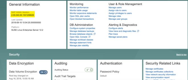 In Overall Database Status können Sie auch Ihre aktuelle HANA-Version ablesen