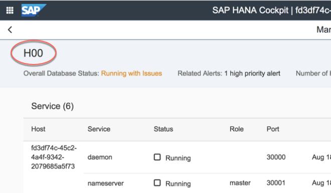 In Overall Database Status können Sie den Namen der Datenbank auf dem Tenant abfragen