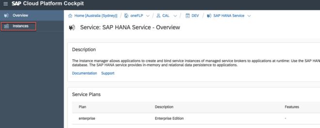Um eine neue HANA-Instanz erstellen zu können, klicken Sie nach Auswählen des HANA Services auf New Instances